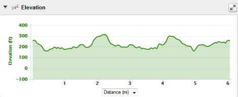 Badger 10k elevation - it felt worse than this looks. Especially at the end.