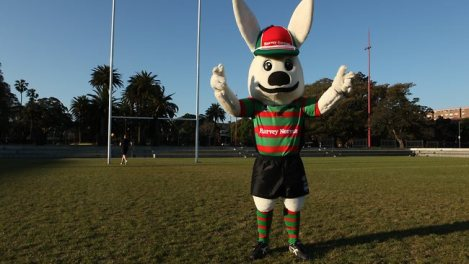 Giant rabbit: malevonent