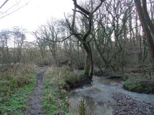 This was a muddy shortcut with crunchy puddles underfoot. It made me grin.